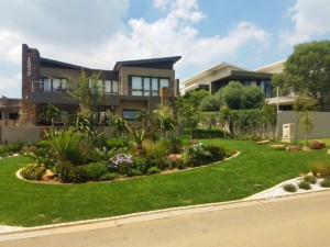 landscaping garden front area
